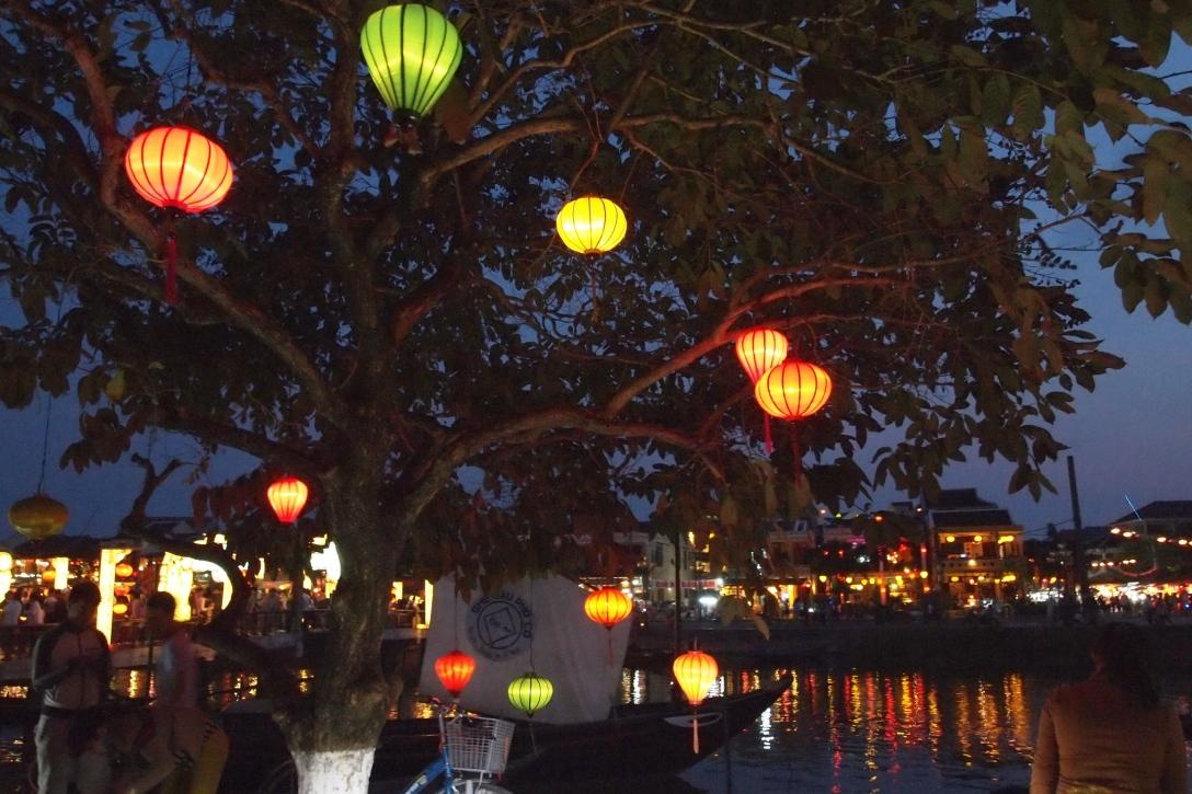 Vietnamesische Seidenlampen hängen an den Bäumen in Hoi Ans Altstadt.