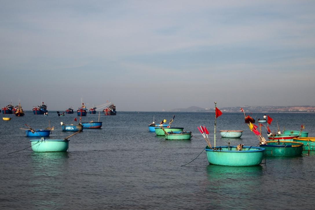 Die für Vietnam typischen kleinen, runden Boote