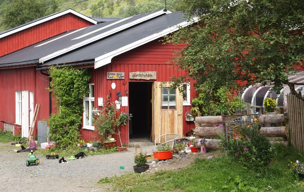 Idyllisch: Am Eingang des Aalan Gards-Café warten eine menge Tiere auf die Besucher.